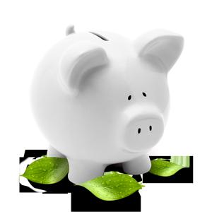 Grüne und ökonomische kostensparende Lösungen